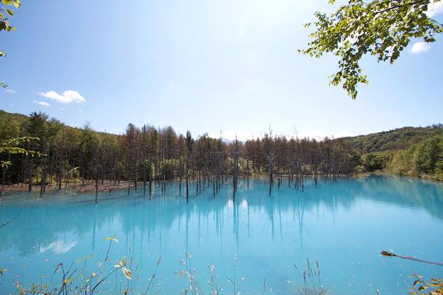 青い池全景2