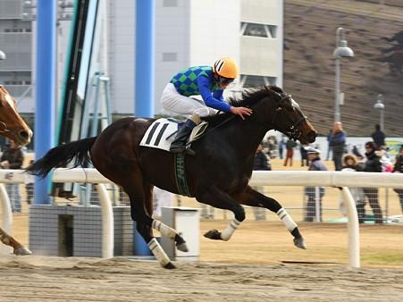 120101川崎03R特選3歳4ロ優勝タキノアクトレス