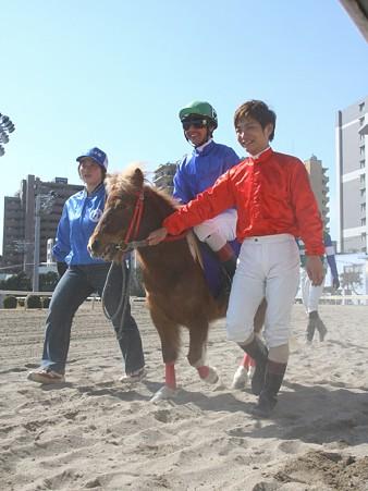 120219ポニーレースin川崎-本馬場入場-6番マサヤ号と酒井忍騎手-01