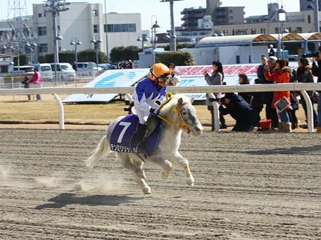 120219ポニーレースin川崎-レース-10