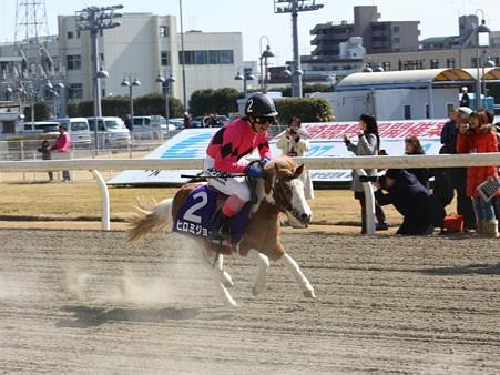 120219ポニーレースin川崎-レース-12
