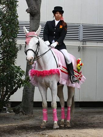 川崎競馬の誘導馬03月開催 チューリップVer-120301-10