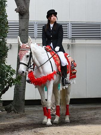 川崎競馬の誘導馬03月開催 ひな祭りVer-120301-02-large