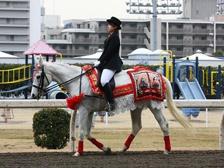 川崎競馬の誘導馬03月開催 ひな祭りVer-120301-06-large