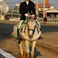 川崎競馬の誘導馬04月開催 桜Verその2-120409-05-large
