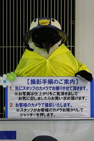 名古屋港水族館110624-ペンギンの人形-02