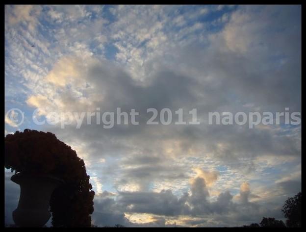 写真: P2940402