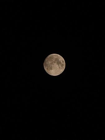 Moon07142011pntx02