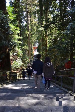 下り階段@箱根神社[3/29]