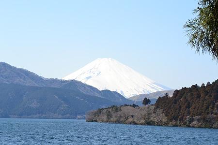 富士山@芦ノ湖[3/29]