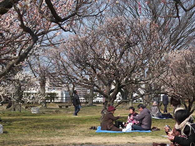 暖かな陽気と梅の下は