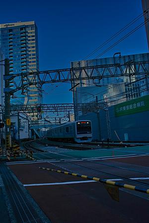 新宿の朝SDIM0052