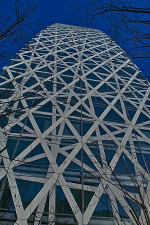 摩天楼SDIM0081