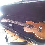 Amy_ukulele