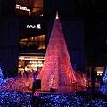 Caretta illumination2011「Blue Forest」