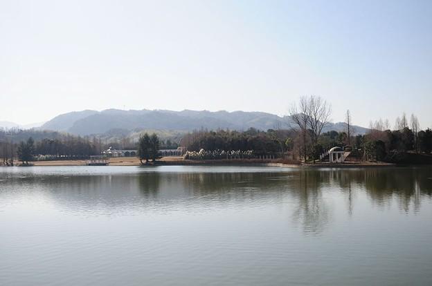 Photos: 蜻蛉池公園