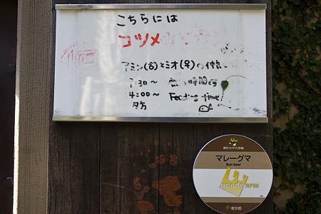 ueno110305112