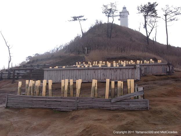 Photos: 海岸防災林造成事業