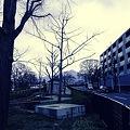 2012-03-10の空