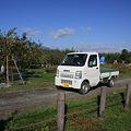 Photos: りんご園を走る軽トラ