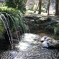 Photos: 竹の滝