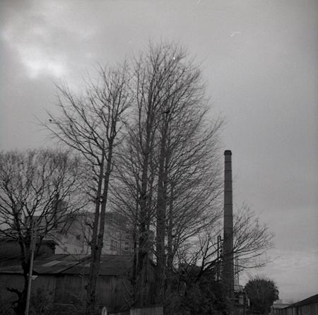 201202-04-031PZ