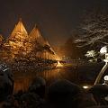 Photos: 冬の兼六園