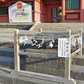 写真: 富士山本宮浅間大社