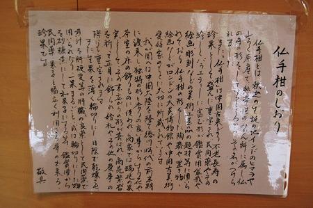2012年01月08日_DSC_0272