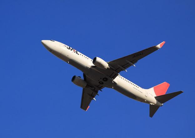JAL 737-800 Take off !