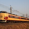 Photos: 成田山初詣列車!