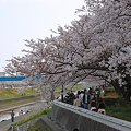 写真: 20110410_153824
