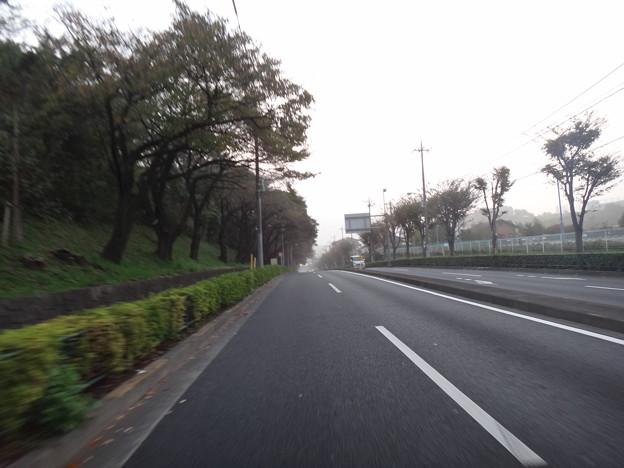 写真: 柚木街道(鑓水)