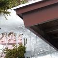 Photos: 屋根からスライド・・・