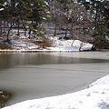雪の風致公園