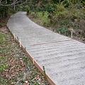 Photos: びわ山への道整備