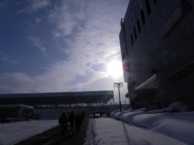 Photos: 北の陽光(旭川)