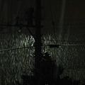 Photos: 夜更けの吹雪_3.23