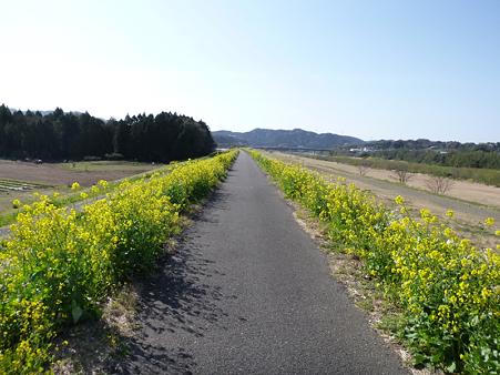 大野川CR