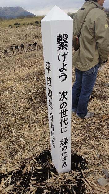 Photos: 20110319_04