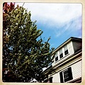 Photos: Crab Apple and the House