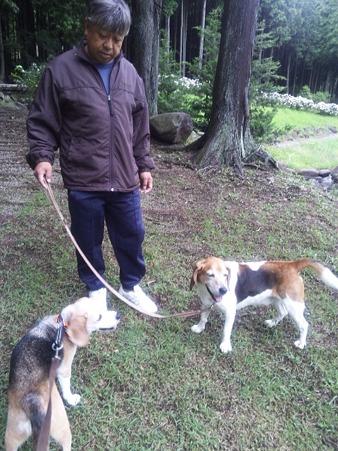 またチョー早起きして森を散歩したよぉ~!