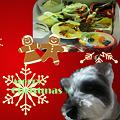 豊南短大生徒2011年クリスマスカード