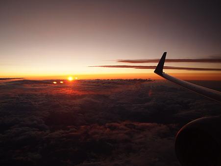 羽と夕日と