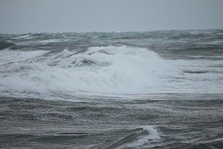 荒ぶる日本海
