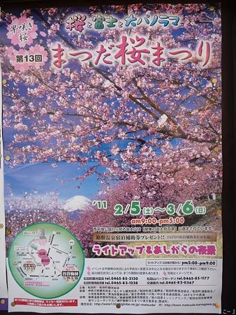 110305-松田駅→松田山 (3)