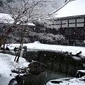 Photos: 円覚寺方丈庭園20120229