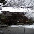 Photos: 円覚寺桂昌庵20120229