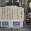 写真: 東霧島(つまきりしま)神社