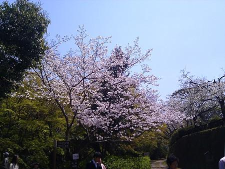 20110331_125219